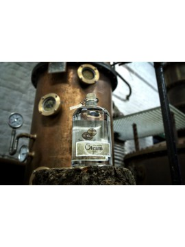 Steam Gin 50cl. 43°